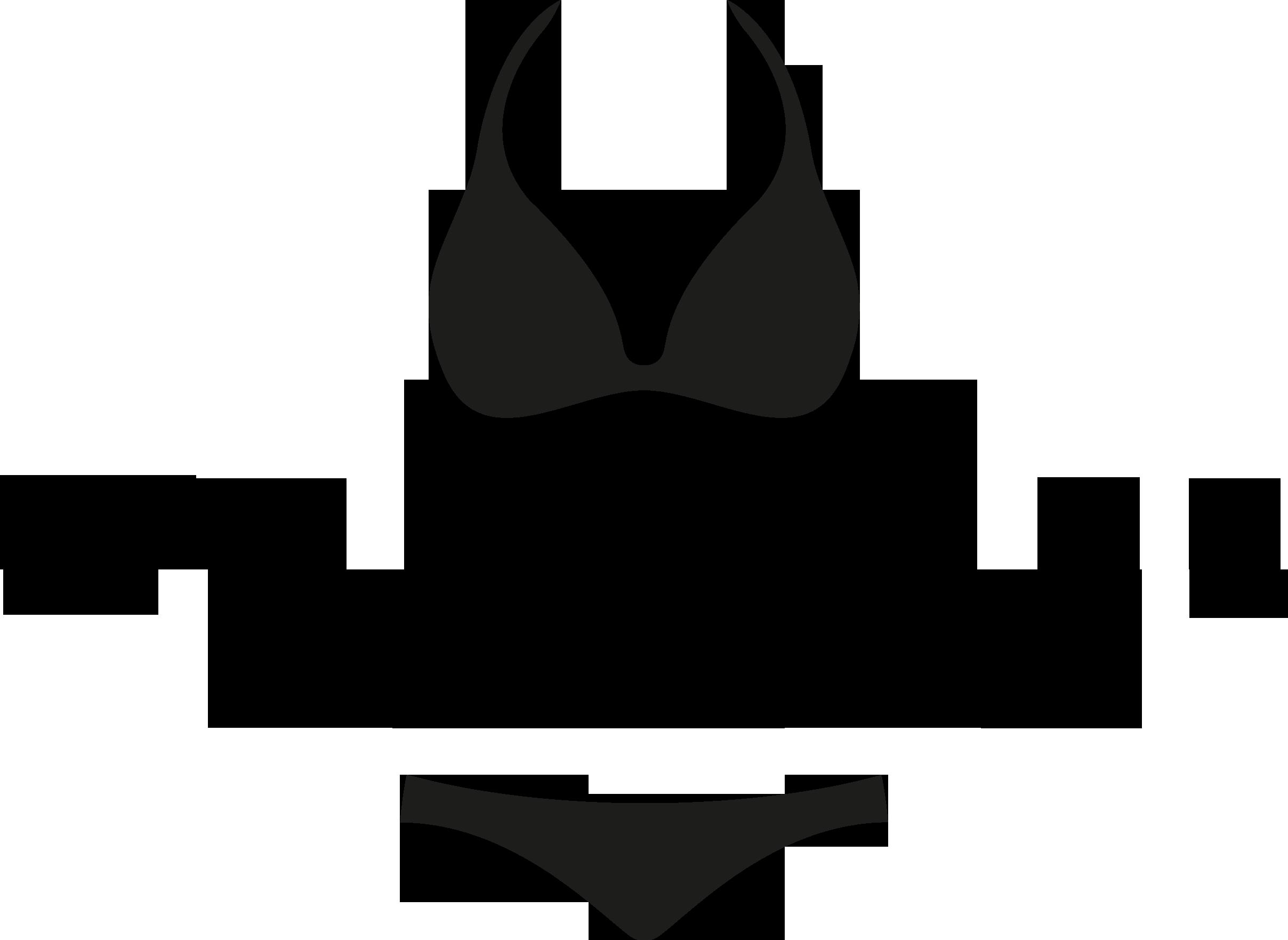 pairadize-logo-header